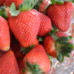 Certified Organic Strawberries
